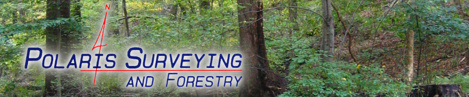 Polaris Surveying and Forestry